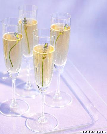 Mwd102281_spr07_champagne_xl