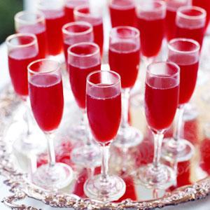 Cranberry-blush-ck-232620-l